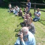 paarden fotograferen
