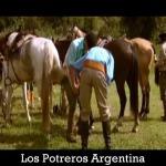 Video thumbnail for youtube video Video Argentinië - Los Potreros