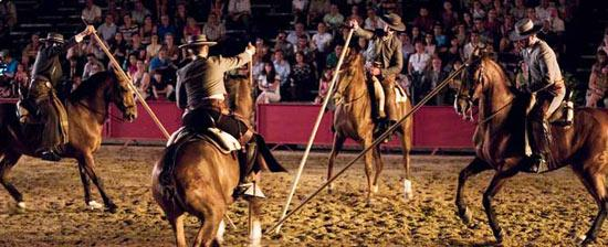 cordoba horse show
