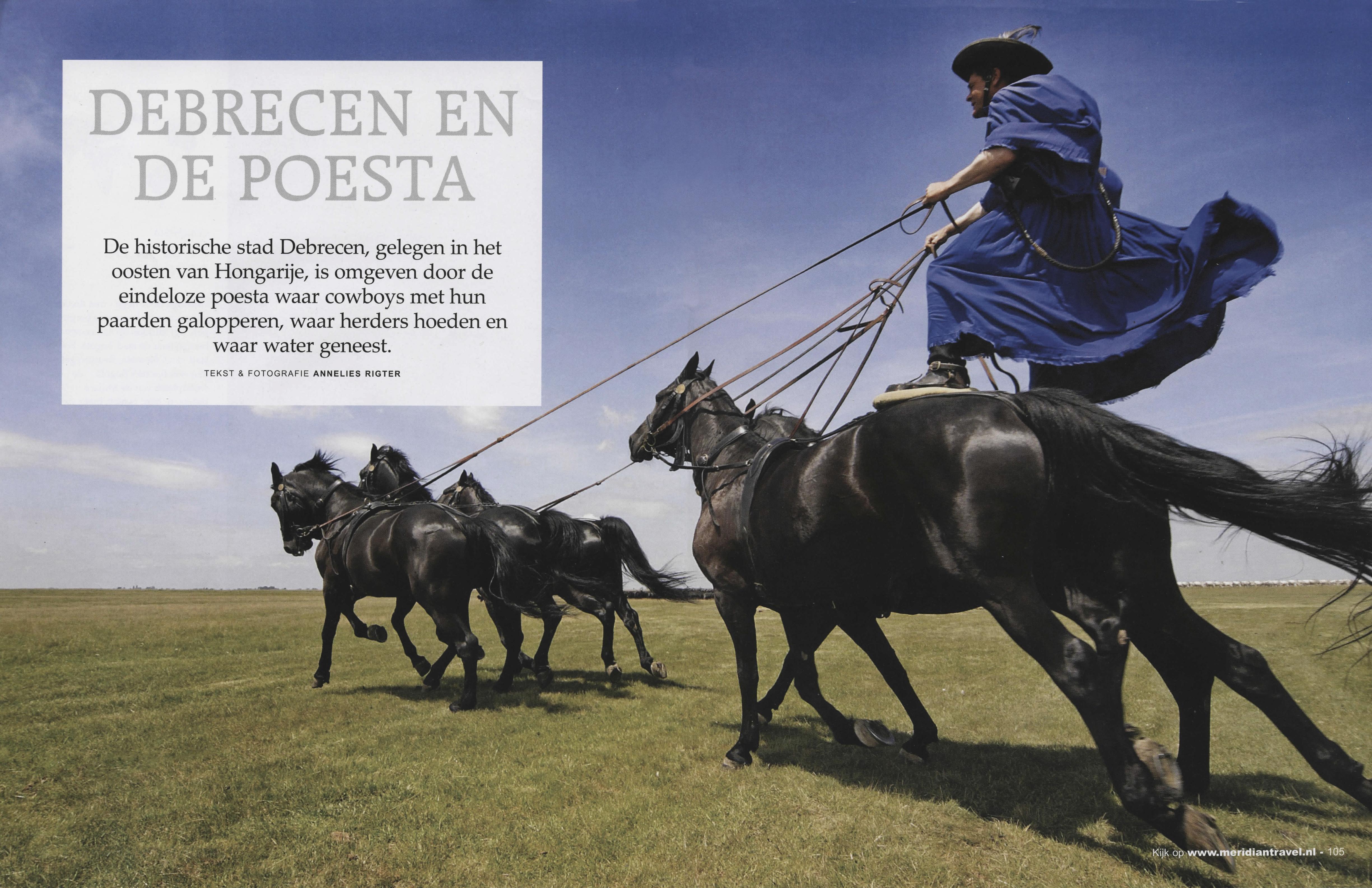 Debrecen Combi 104 & 105 [paarden]
